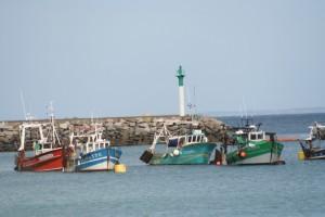 Places de port