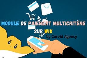 Module paiement Wix