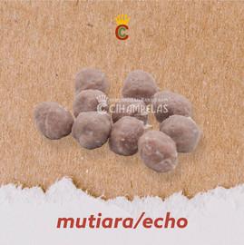 Mutiara / Echo