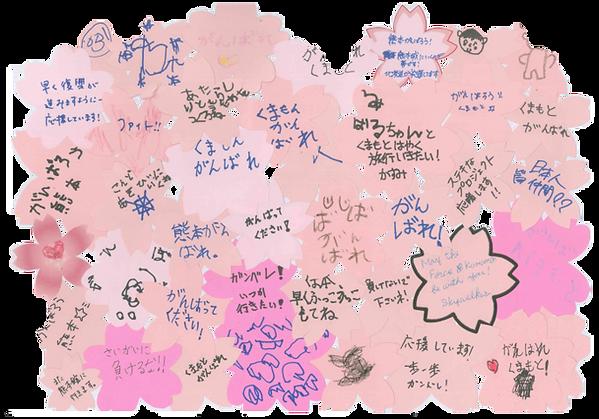 熊本への応援メッセージ
