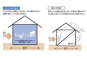 moiss_TM_1610-pdf.jpg