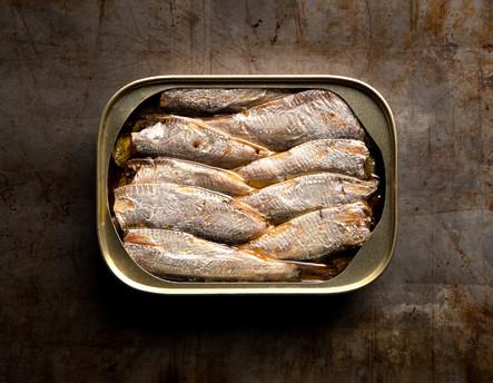 Sardines 256 online C.jpg