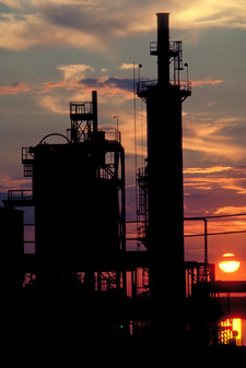 CF Sunset- Website2020.jpg