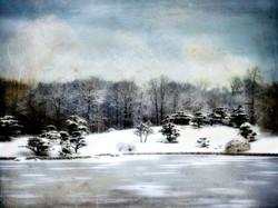 Perfect Winter 2/20