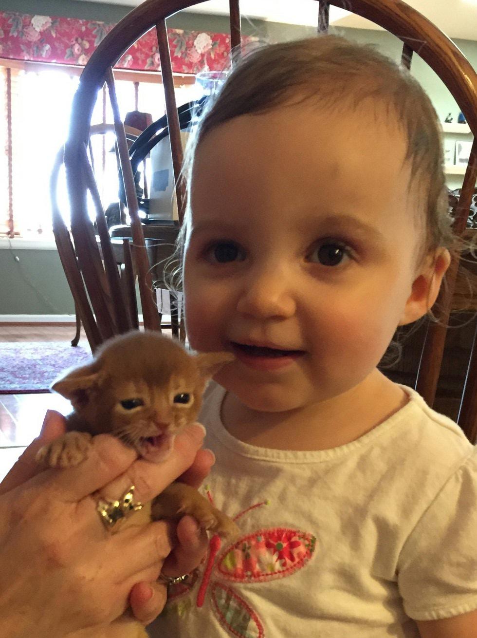 Raegan & kitten