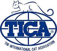 TICA with cat.jpg