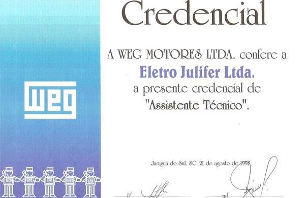 WEG- Assistente Técnico de Motores desde 1998