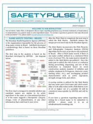 SafetyPulse Volume 6 - Brazil Methodology