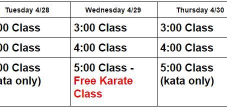 Week 3 of Online Karate