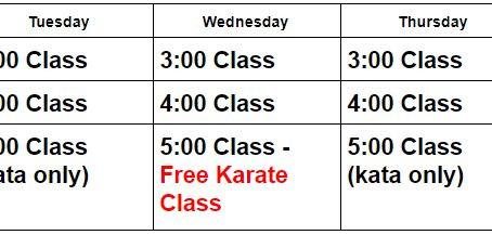 Online Karate Update