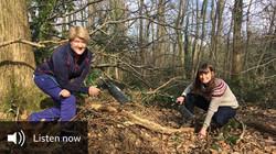 Walking in Sound: Ellie Williams in North Somerset