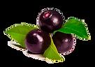 fruta-transparente.png
