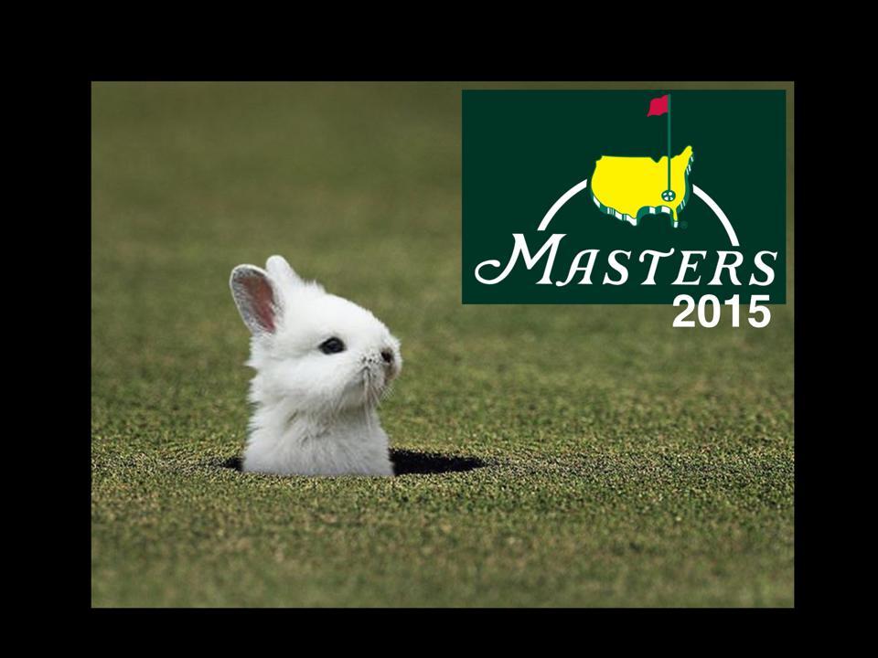 master-2015_lapin