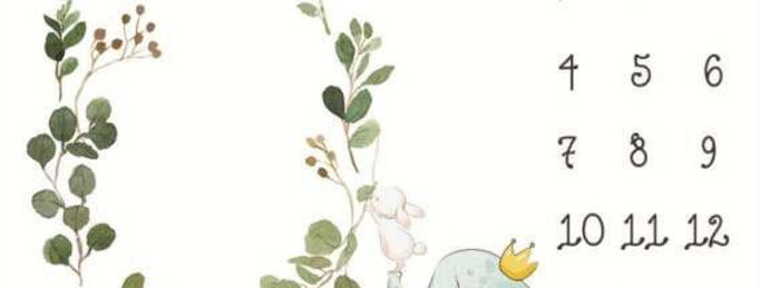 Paturica aniversara Milestone  pentru fotografii bebelus - elefant