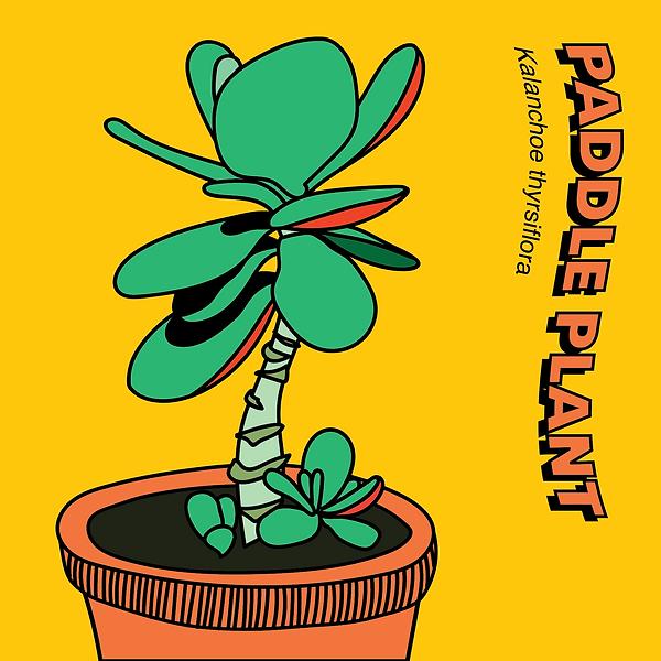 PLANTS-11.png