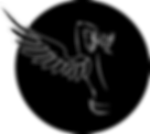 Piedra Bezoar: Colección La espalda del ángel