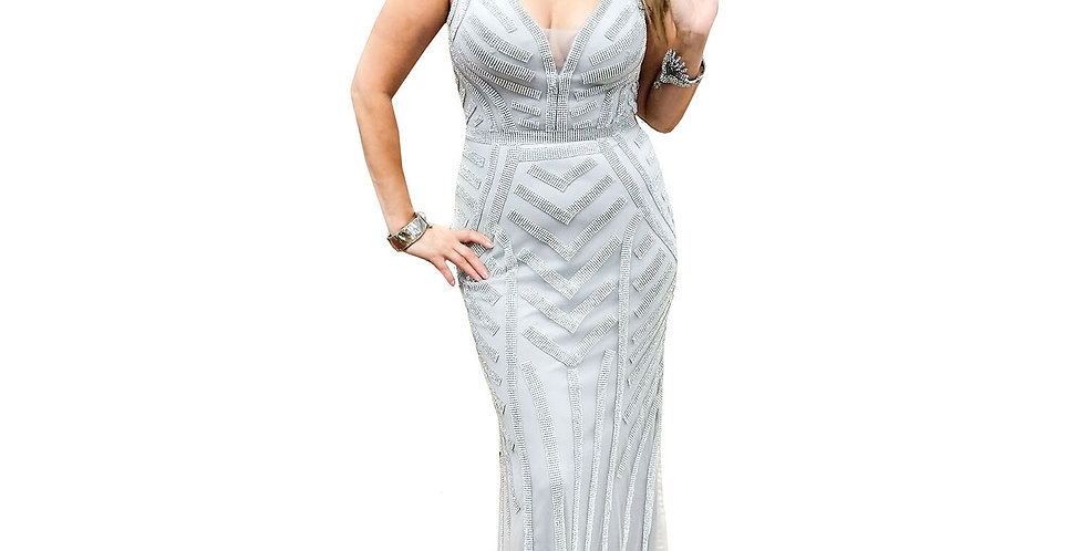 Silver Sheer & Sequin Low-V Gown