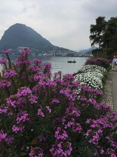 Lugano park n flowers.JPG