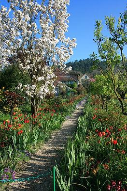 Monet Garden by Nadine Mihaljevic (2).jp