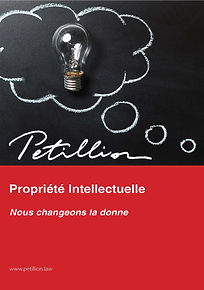 Pages from 18 08 30 IP Brochure PETILLIO