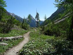 Bergweg Richtung Zams