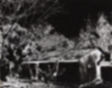 N.3a.jpg