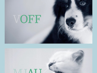 AniCura å litt mer om tenner til hund og katt