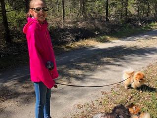 Emilie og jeg på tur med hundene