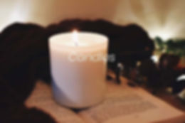 Moss and MIlk Candles.jpg
