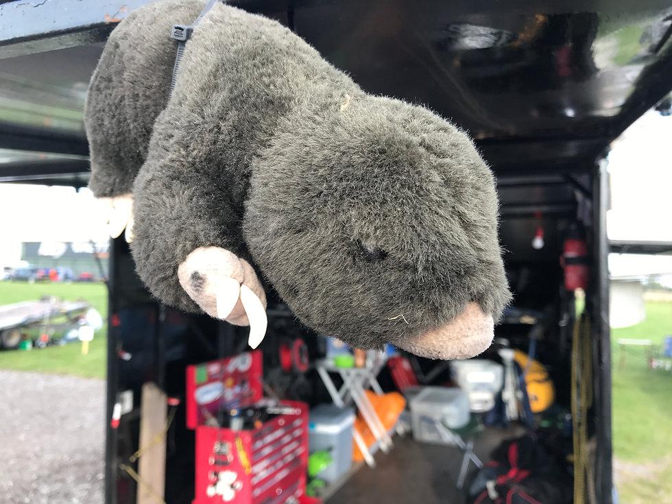 Mole hanging from trialer.JPG