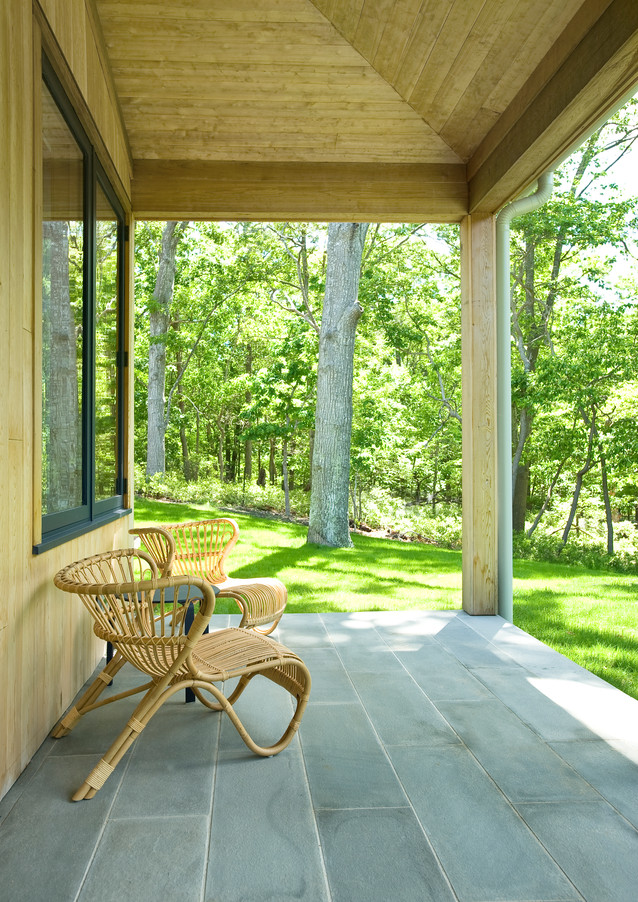 Porch view into the Woods