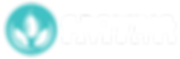 FullMockup_TransparentBG_InvertedWhite.p