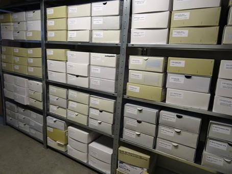 Bundestag fördert Archivarbeit in Lüneburg