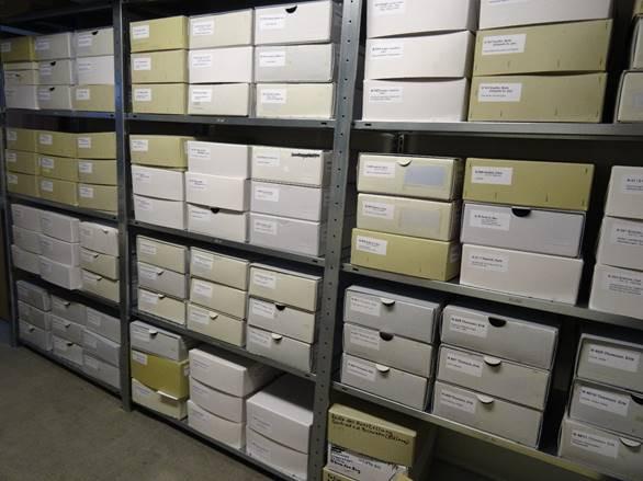 Archivkartons des Car-Schirren-Archivs in Lüneburg