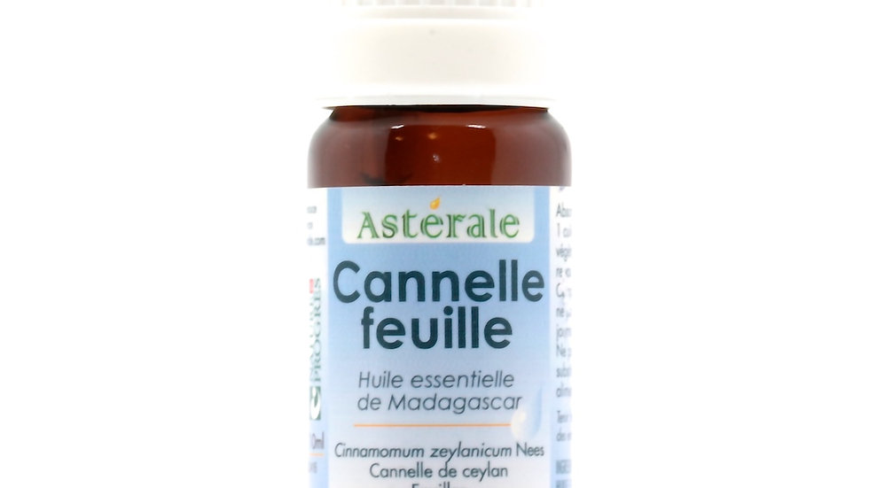 CANNELLE FEUILLE