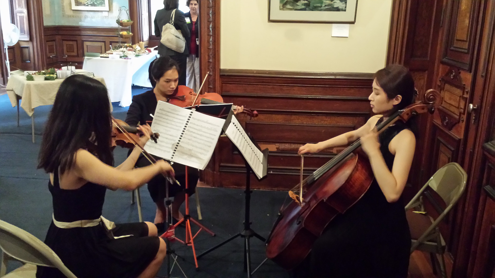 Girls-Electric-Violinist.jpg