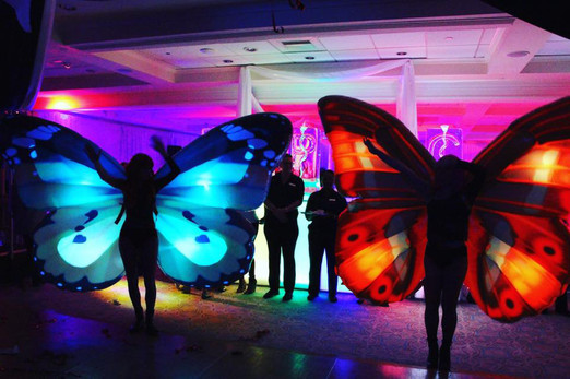 Led-Butterflies.jpg