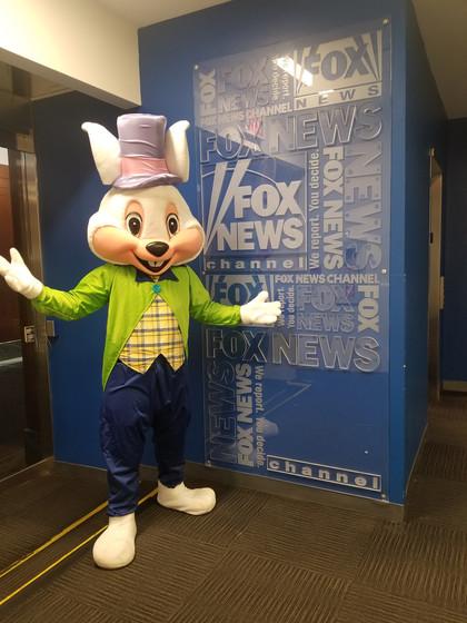 Rabbit-Costume-Character.jpg