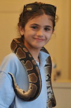 Friendly-Snake-For-Educational-Animal-Show.jpg
