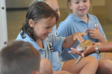 Mammals-For-Kids-Educational-Sho.jpg