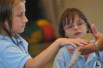 Amphibians-For-Educational-Show.jpg