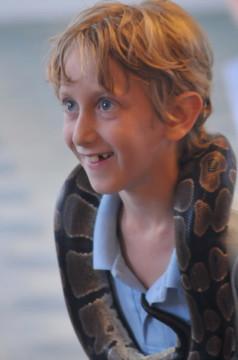 Snake-For-Kids-Educational-Show.jpg