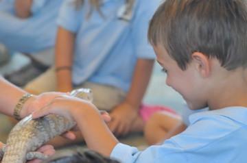 Animals-For-Children-Educational-Show.jpg