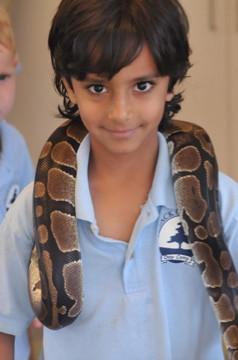 MME-Friendly-Snake-For-Kids.jpg