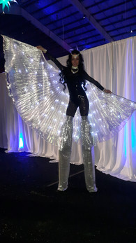 Led-Winged-Stilt-Walker.jpg