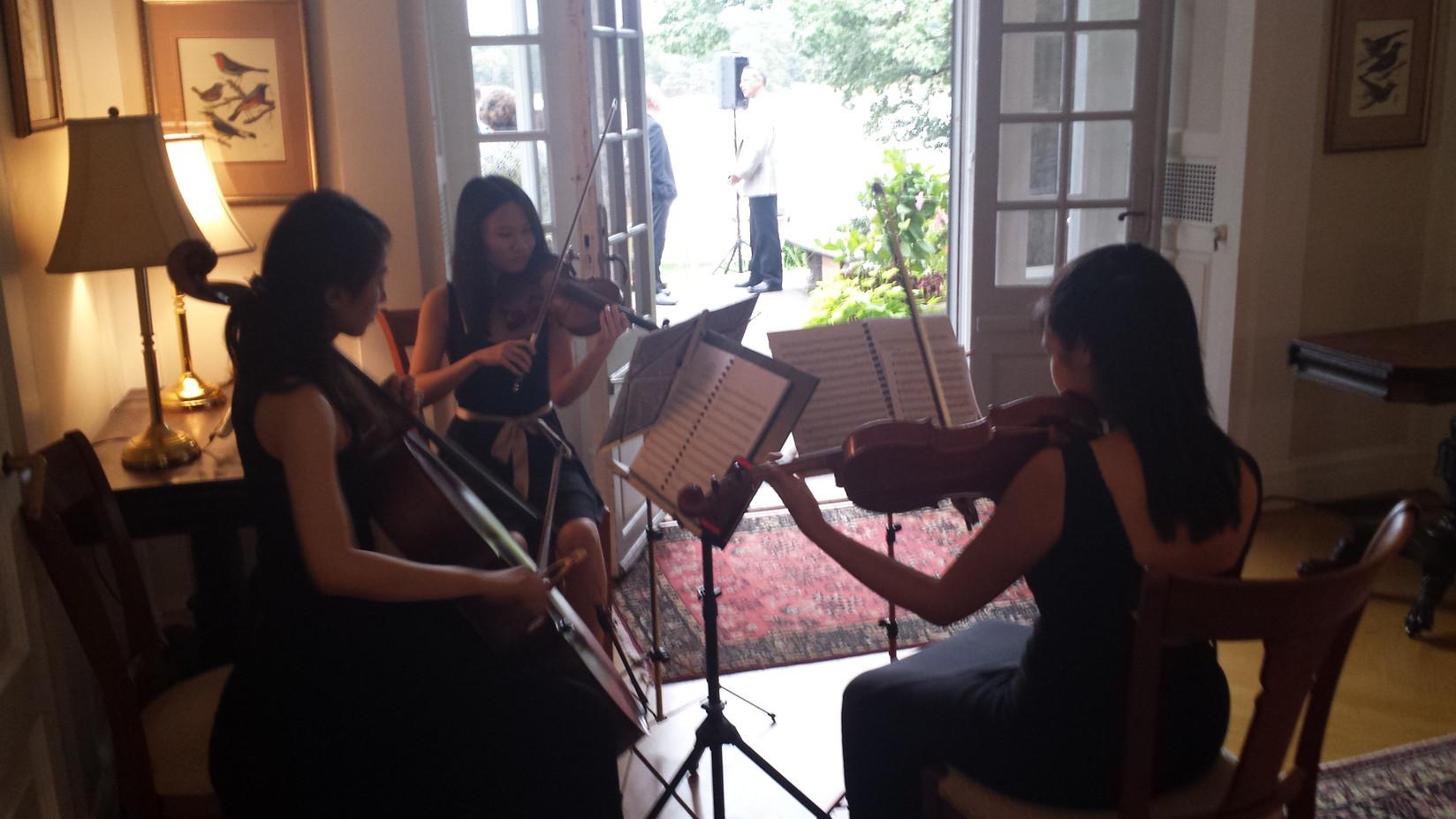 Electric-Violin-Rehearsal.jpg