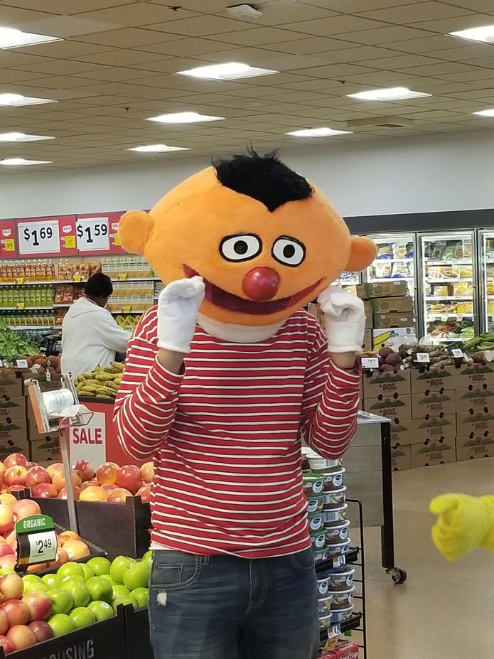 Ernie-Costume-Character.jpg