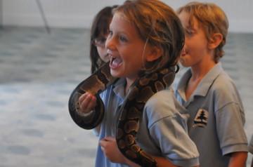 Amphibian-Interactive-Animal-Show.jpg