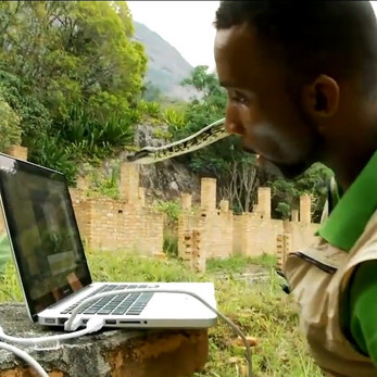 Virtual-Livestream-Reptile-Show-For-Hire