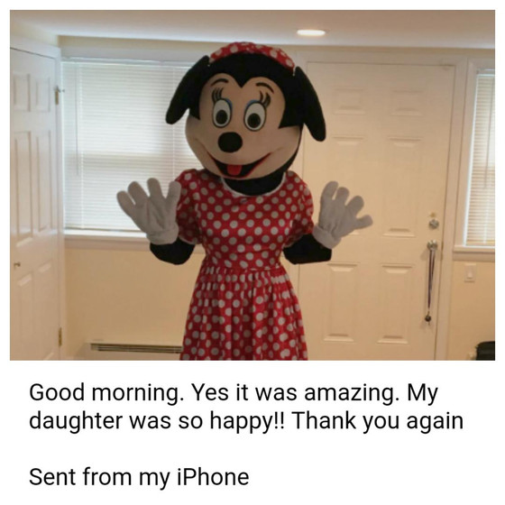 MME-Minnie-Mouse-At-Party-Client's-Feedback.jpg